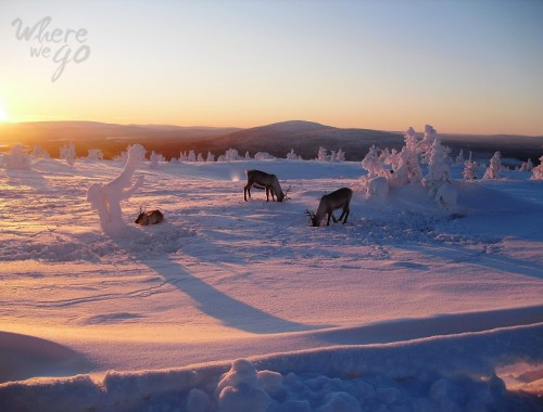Lapland - Where we go