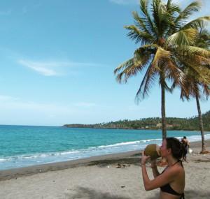 Met een kokosnoot onder een palmboom in Baracoa