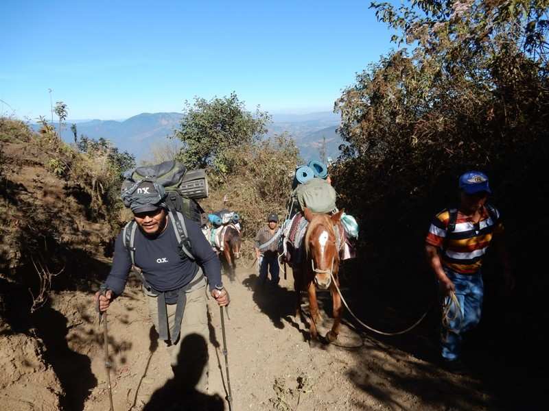 Beklimming Acatenango OX expeditions