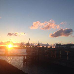 Rondje hardlopen in de Rotterdamse haven voorbereiding voor de triatlon