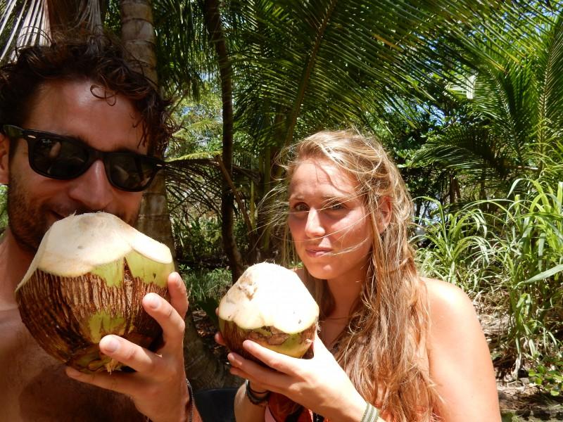 kokosnoot corn island