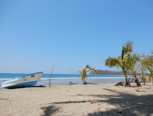 strand samara